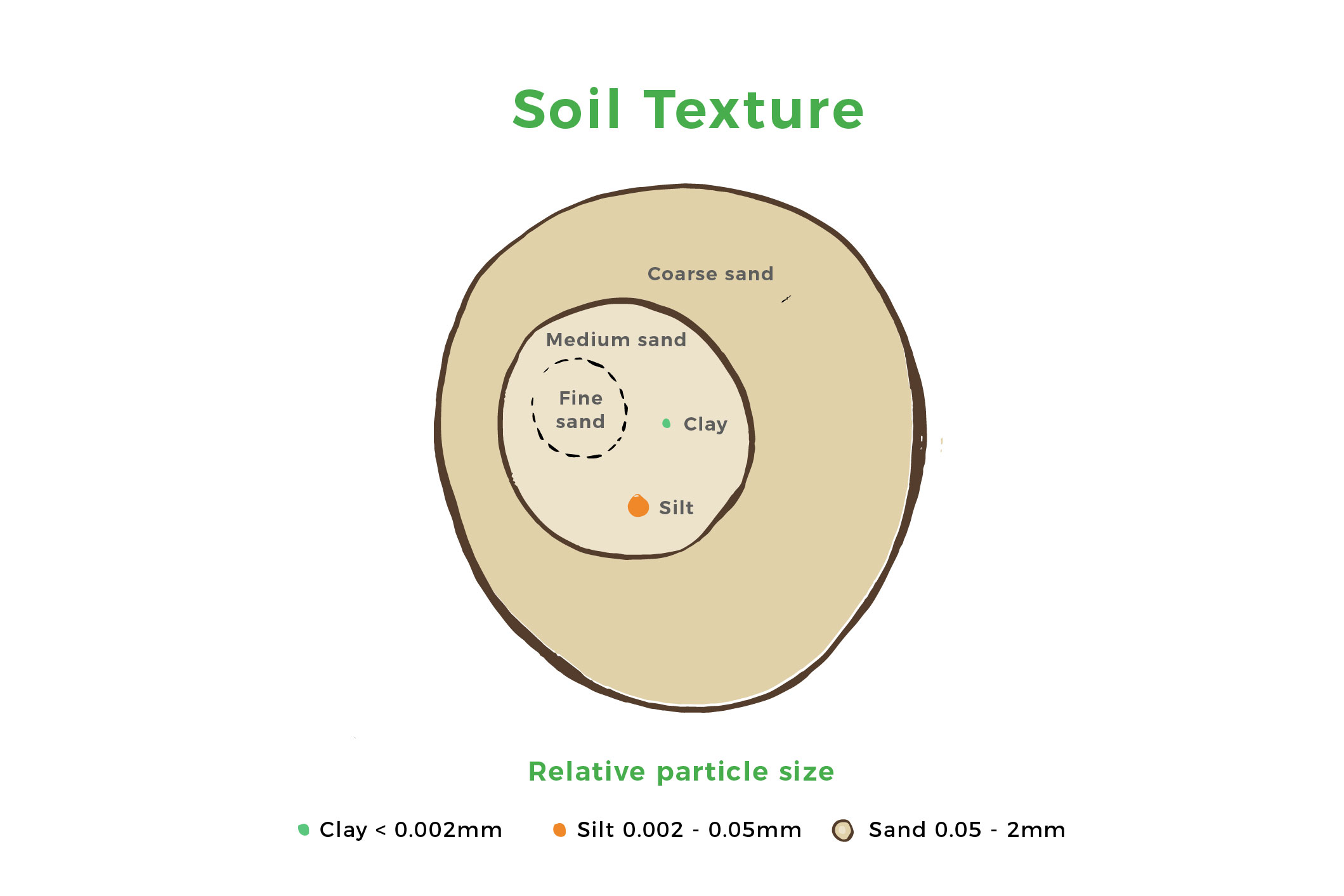 relative sizes of soil particles